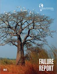 The Illustrious Failure Report